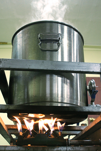 A 36-liter brew kettle on a stove